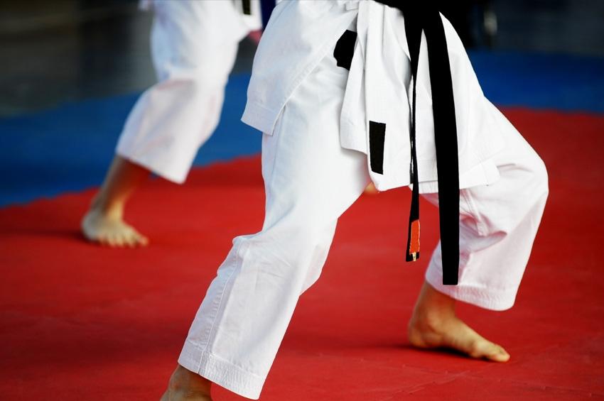 Judo Image
